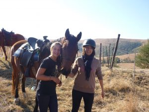 drakensberg activities - Horse trails at Antbear Lodge