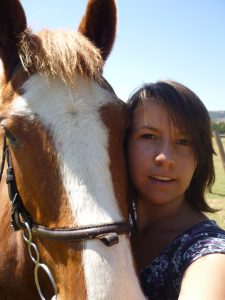 animals-horse-3
